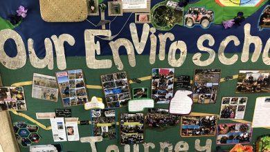 Photo of Your stories: Omakere School's journey to Environmental Manaakitanga