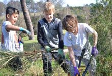 Photo of Op-Ed: Making the natural world the foundation of all school education systems